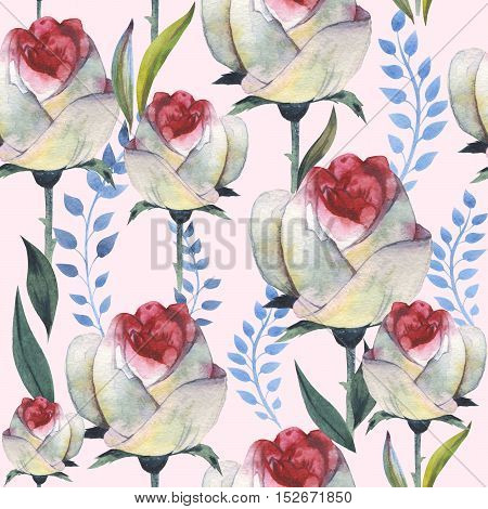 Wildflower anemone flower pattern in a watercolor style isolated. Full name of the plant: anemone, nemorosa. Aquarelle wild flower for background, texture, wrapper pattern, frame or border.