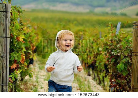 Cute baby boy child with curly blond curly hair in gray hoody and jeans smiling on vineyards background