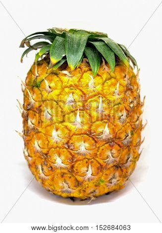 Pineapple with small leaves on top on white background. Yellow ripe exotic fruit for sweet vegetarian dessert. Pine skin surface picture. Tropical garden harvesting. Juicy and fresh pineapple image