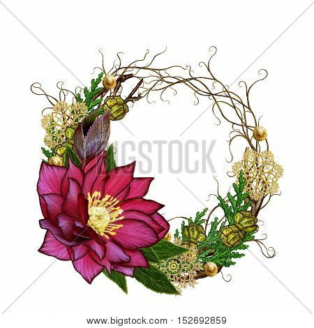 Christmas composition wreath. Weaving thin branches red flower hellebore arborvitae branches green leaves pine cones golden snowflakes. Isolated on white background.