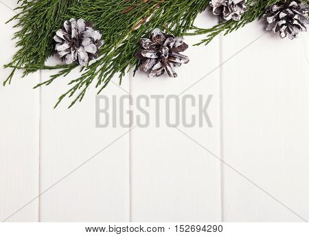 Branches And Pine Cones. Christmas Still Life.