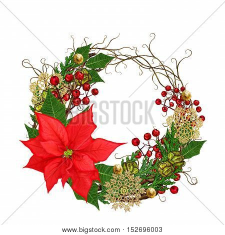 Christmas composition wreath. Weaving thin branches red red poinsettia flower arborvitae branches green leaves pine cones golden snowflakes. Isolated on white background.