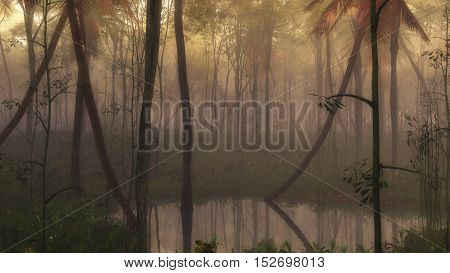 Pond in a dense misty tropical forest.