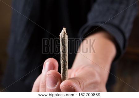 Marijuana joints and buds in the mans hand. Man offering drugs