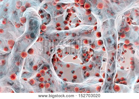 Biofilm of antibiotic resistant bacteria. Spherical bacteria. Staphylococcus aureus, MRSA. 3D illustration