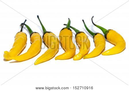 Red And Yellow Peppers In Isolation