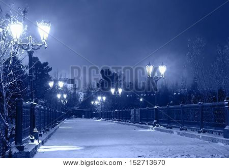Winter park in the night time bridge covered by snow with lamps. Toned.