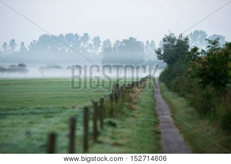 Pathway In Misty Rural Landscape. Geesteren. Gelderland. The Netherlands.