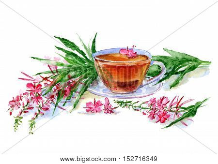 Tea with fire weed.Watercolor hand drawn illustration.Tea cup floral composition.