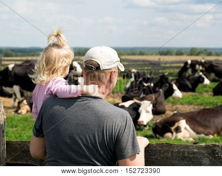 man with a little girl looking at a herd of cows