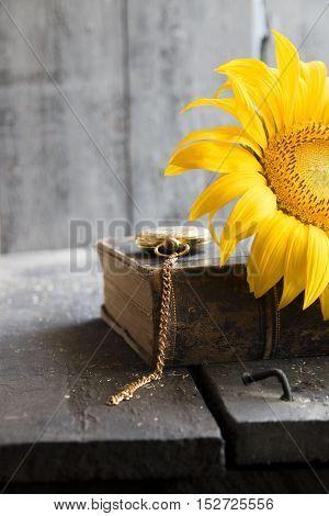 sunflower on a old, wooden vintage background