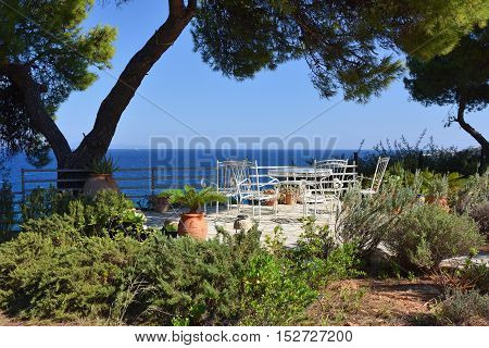 Picnic table and chairs on the lawn under pine trees in courtyard on coast of Aegean sea at sunset time Attica Greece