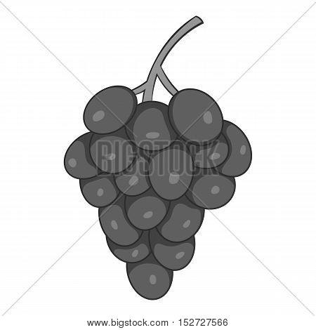 Grapes icon. Gray monochrome illustration of grapes vector icon for web