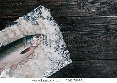 Fresh whole salmon fish on ice. Flat lay