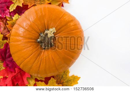 Pumpkin and autumn leaves isolated on white background