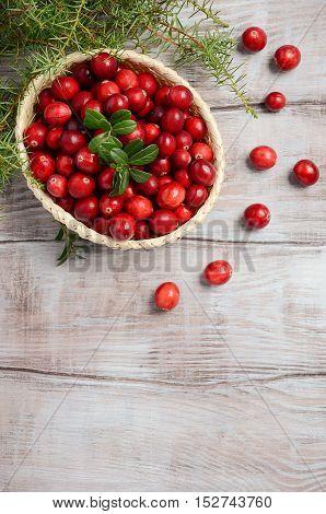 Harvest fresh red cranberries in wicker basket, top view, copy space