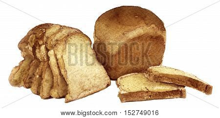 watercolor sketch of bread on white background