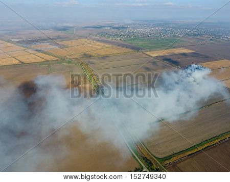 The Burning Of Rice Straw In The Fields. Smoke From The Burning Of Rice Straw In Checks. Fire On The