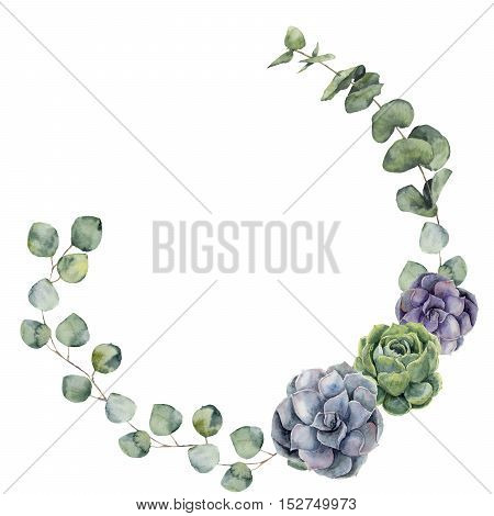 Watercolor floral border with baby, silver dollar eucalyptus leaves and succulent. Hand painted floral wreath with branches, leaves of eucalyptus isolated on white background. For design or background.