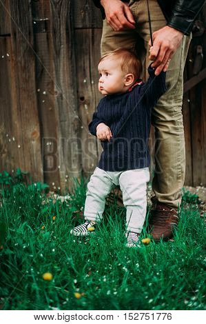 Beautiful Baby Boy Staying Holding Father's Hand, 9Months At The Wood Background