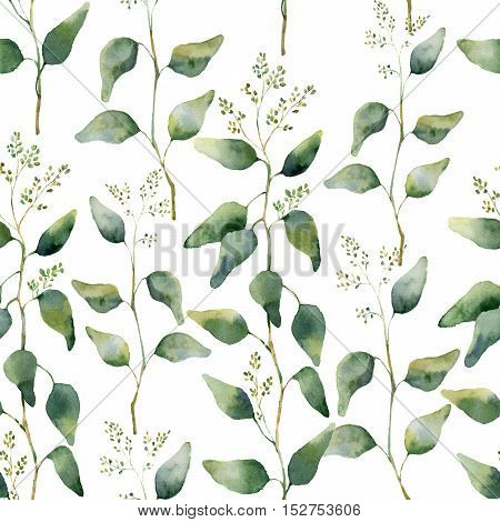 Watercolor green floral seamless pattern with flowering eucalyptus. Hand painted pattern with branches and leaves of eucalyptus isolated on white background. For design or background.