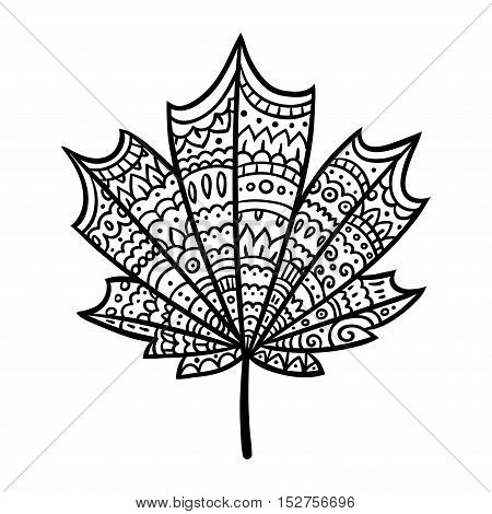 Hand drawn maple leaf doodle with intricate ornament texture. Zen coloring book illustration.