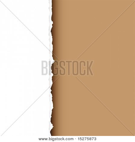 Piece of white paper with torn edge and brown background with shadow