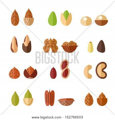Nuts and seeds vector icon set. Modern flat design.