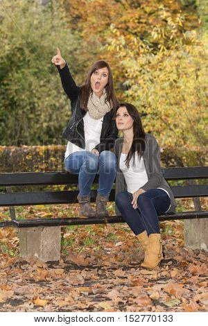 Two beautiful lifestyle women on bench in colorful autumn nature. One girl is pointing upwards. The other girl is looking to the same point. Wonderful funny friendship girls in fall clothes and colors.