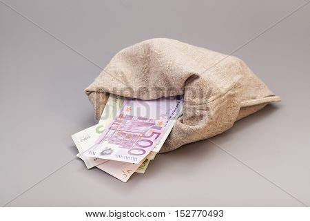 Money bag with euro isolated on gray background