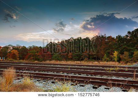 Autumn Nature. Cloudy Natural Landscape View.
