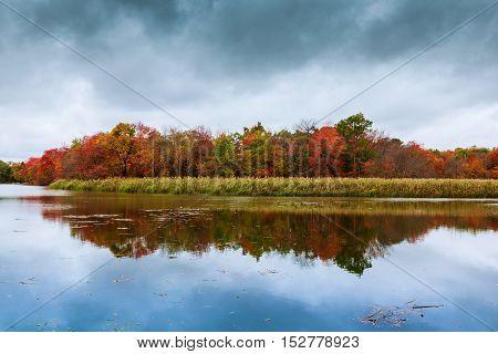 Colorful Autumn Trees On The Lake