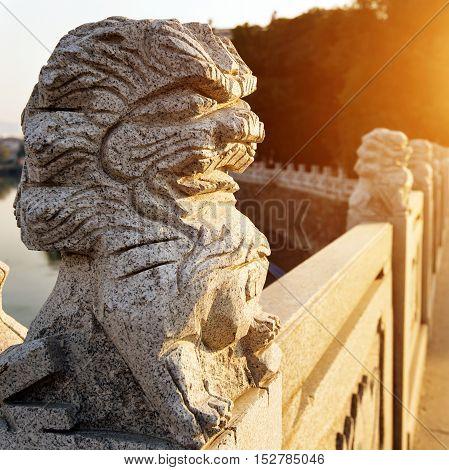 ancient vivid stone lion on the bridge in beijingChina