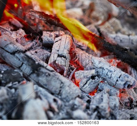 weak a fire under the glowing coals and ashes
