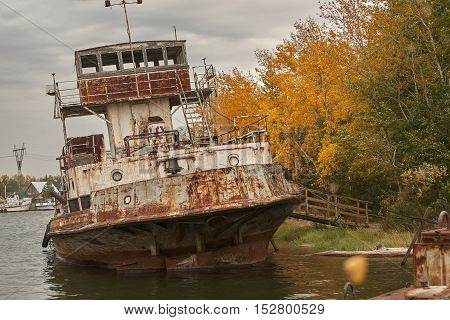Rusty abandoned ships in the dock. Autumn trees