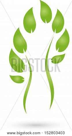 Man and leaves, naturopath and female doctor logo