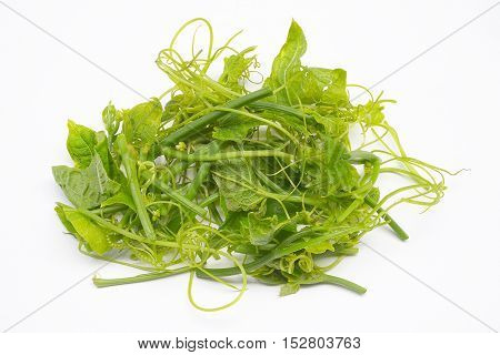 Close up fresh green chayote leaf isolated on white background
