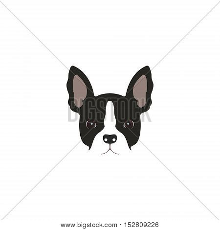 French bulldog head isolated on white background. Vector illustration