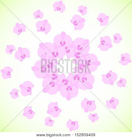Seamless vector background with flowers of orchids. Delicate pink and green colors