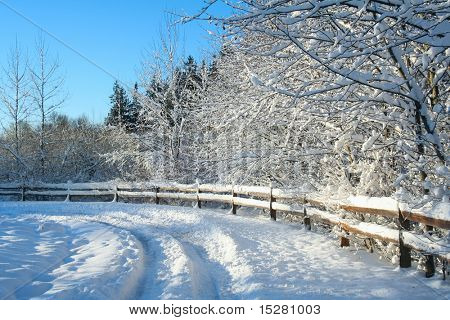 Beautiful winter snow landscape with a polarized blue sky.
