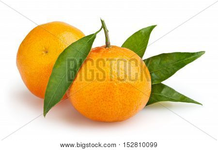 Tangerines isolated on white background with clipping path