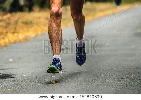 hairy legs male runner running on asphalt road in autumn forest