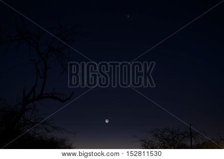 Twilight Sky In South Africa In Winter. Half Moon And Planets In Line: Jupiter, Mercury And Venus. A
