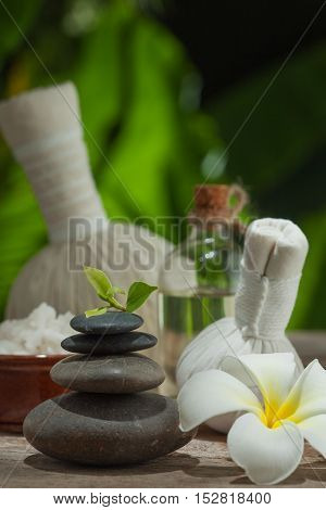 close up view of spa theme objects on color back