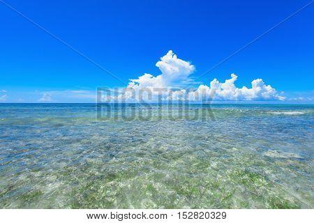 sandy beach and calm blue sea surf