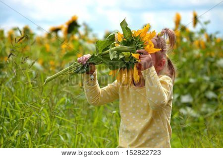 Little girl. Blonde hair. Summer day. A field of sunflowers. Blooming sunflowers sniffs the child. Without a face.