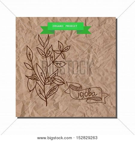 Herbs and Spices Collection - jojoba. Suitable for ads, signboards, packaging and identity designs