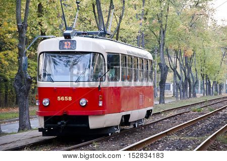 Red Tram On Track In Forest