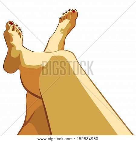 Beautiful female legs. Vector illustration in layers. Isolated image
