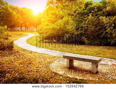On the outskirts of the autumn the golden landscape winding path.